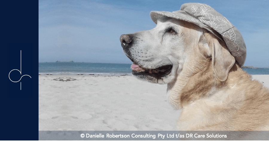 How Dementia Assistance Dogs Support People Living With Dementia